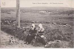 CPA - 19 - Types Et Scènes Champêtres - PASTORALE LIMOUSINE - Edit E.F.I.U (Eyboulet Fréres à USSEL) N° 81 - Unclassified