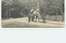 PARIS - Jardin D'Acclimatation - ELD - Mignonette - Format 14 X 6 Cm - Elephant - Parchi, Giardini