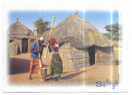 Sénégal Dans Un Village Du Ferlo - Senegal