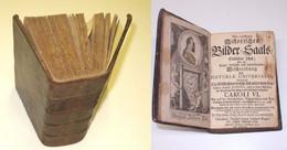 Neu-eröffneten Historischen Bilder-Saals Siebender Theil Von 1719 (Nr.17939) - Livres Anciens