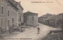 88 Bleurville, Tete De Pave - Altri Comuni