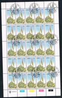 1981 Windoek Namibia South Africa North Province - Aloe Erinacea - 5 Cents - Flora -  Plants -  Aloe  Sheet Of 20 MNH - Namibia (1990- ...)