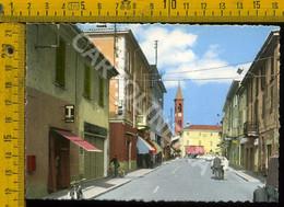 Pavia Sannazzaro De'Burgondi Via B. Cairoli - Pavia