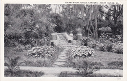 Louisiana Avery Island Scenes From Jungle Gardens Curteich - Other