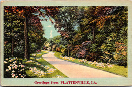 Louisiana Greetings From Plattenville - Other