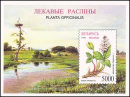 Belarus 1996, Mi. Bl. 11 ** - Bielorrusia