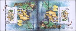Belarus 1999, Mi. Bl. 17  KD ** - Bielorrusia