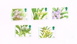 Orchidées.MNH,Neuf Sans Charnière. - Nuevos