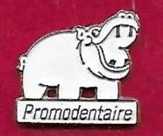 @@ Dentiste Hippopotame  Promodentaire  @@anim126a - Animali