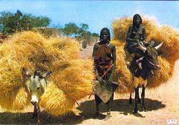 5 AK Tschad * 4 Ansichtskarten Mit Jungen Frauen Aus Dem Tschad - Und Eine AK Mann Mit Einer Piroge Auf Dem Tschadsee - Chad