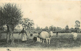 58 EN NIVERNAIS - La Traite Des Vaches Dans La Prairie - Other Municipalities