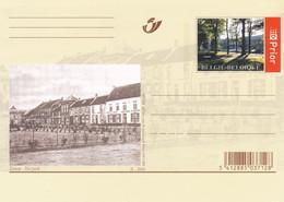 Carte Entier Postal Neuve Zichem Het Park - Unclassified