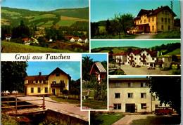 8529 - Niederösterreich - Tauchen Bei Mönichkirchen , Gasthof Aminger , Mehrbildkarte - Gelaufen - Neunkirchen
