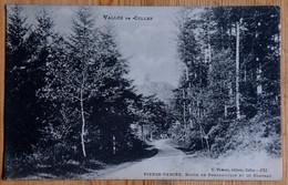 54 : Pierre-Percée - Route De Pnexamoulin Et El Château - Vallée De Celles - (n°20119) - Other Municipalities