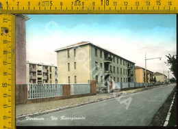 Monza Vimercate Via Risorgimenti - Monza