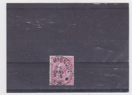 Belgie Nr 46 Famignoul (STERSTEMPEL) (ontbrekend Tandje Onderaan) - 1884-1891 Leopold II