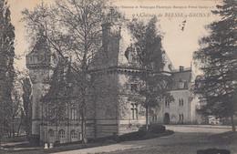BRESSE-sur-GROSNE (Saône Et Loire): Château De Bresse-sur-Grosne - Other Municipalities