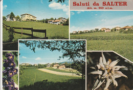 SALTER - SALUTI DA - VAL DI NON.......R9 - Other