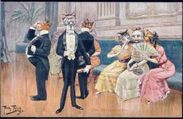 * Katzen Personifiziert Sign. A. Thiele TSN 1229 - Thiele, Arthur