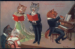* Katzen Personifiziert Sign. A. Thiele TSN 1852 - Thiele, Arthur