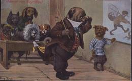 * Hunde Personifiziert Sign. A. Thiele TSN 1013 - Thiele, Arthur