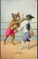 * Hunde Beim Boxkampf, Vermenschlicht ähnlich Thiele, 1x Schabstelle - Thiele, Arthur