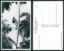 PORTUGAL - GUINÉ  [ 029 ] - FURADOR DE VINHO DA PALMA - Guinea-Bissau