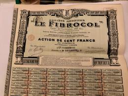 S.A. < LE  FIBROCOL  > -----------Action  De  100 Frs - Industrie