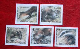 Les Mustélidés Marters Das  Badger OBC N° 3837-3841 (Mi 3883-3887) 2008 POSTFRIS MNH ** BELGIE BELGIEN / BELGIUM - Ongebruikt