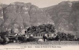 Saleve Chateau De Crevin Et La Grande Gorge - Autres Communes