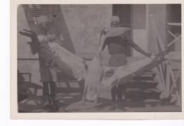 Mauritanie, Port-Etienne Baie De L'Etoile, Rarissime Photo D'une Capture De Pélican En Février 1942. - Mauritania