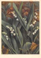 Liliaceae Muguet Maiglöcken Mughetto Lily-of The Valley   ( 10 X 15 Cm) - Fiori
