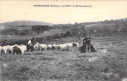 19 - PEYRELEVADE : La Cour - Le Berger Médaillé ( Troupeau De Moutons ) CPA Village ( 800 Habitants) - Corrèze - Other Municipalities