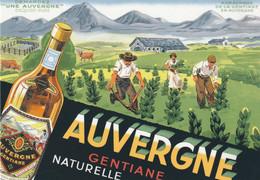 15 Auvergne   Arrachage De La Gentiane   Pub Auvergne Gentiane - Other Municipalities