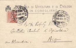 """10079-CARTOLINA PUBBLICITARIA """"R. SCUOLA DI VITICOLTURA E DI ENOLOGIA IN """"-1923-FP - Publicidad"""