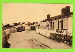 ILE DE NOIRMOUTIER - LA GUERINIERE - Ile De Noirmoutier