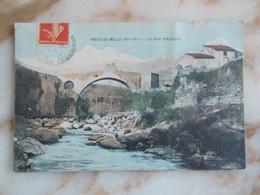 CPA PRATS DE MOLLO Le Pont D'Espagne - Altri Comuni