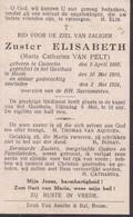 Doodsprentje Zuster Elisabeth ( Maria Van Pelt ) ° Kasterlee Casterlee 1890 + Gasthuis Te Boom 1924 - Devotion Images