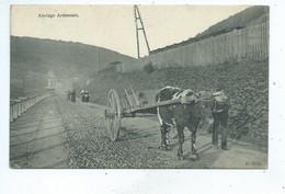 Attelage Ardennais ( Herbeumont ) - Herbeumont