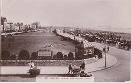 Cd - Postcard WESTON-SUPER-MARE - The Esplanade And Lawns - Weston-Super-Mare