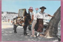 PORTO CRISTO Détail Typique - Mallorca