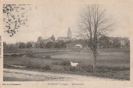 Z++ 20-(88) UXEGNEY - VUE GENERALE - PHOTO. A. BOUTEILLER , EPINAL - 2 SCANS - Other Municipalities