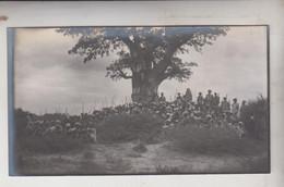 SOMALIA ITALIANA COLONIE BENADIR FOTOGRAFIA  ORIGINALE 1913/1915  CAPI E SCERIFFI A BUR TILE  CM 14 X 8 - War, Military