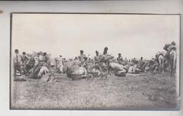 SOMALIA ITALIANA COLONIE BENADIR FOTOGRAFIA ORIGINALE 1913/1915 Artiglieria In Marcia BUR HACABA  CM 14 X 8 - War, Military