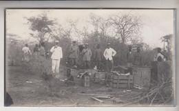 SOMALIA ITALIANA COLONIE BENADIR FOTOGRAFIA ORIGINALE 1913/1915 IN CUCINA A DINSOR   CM 14 X 8 - War, Military