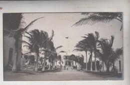 SOMALIA ITALIANA COLONIE BENADIR FOTOGRAFIA ORIGINALE 1913/1915 BRAVA E VIALE DEI COCCHI CM 14 X 8 - War, Military