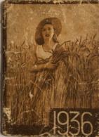 AHENDA-1937 SIROP DESCHIENS—PUBLICITE MALADIE - Small : 1921-40