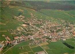CPSM Tavannes-Vue Aérienne      L459 - BE Berne