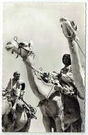 Tchad - Abèche - Scènes Du Ouaddaï - Chad
