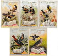 5 CHROMOS Chocolat SUCHARD   +/- 1897  Serie 56     Oiseaux Chanteurs       Trade Card  Singing Birds - Suchard